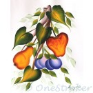 Fruits on the Vine Canvas Painting